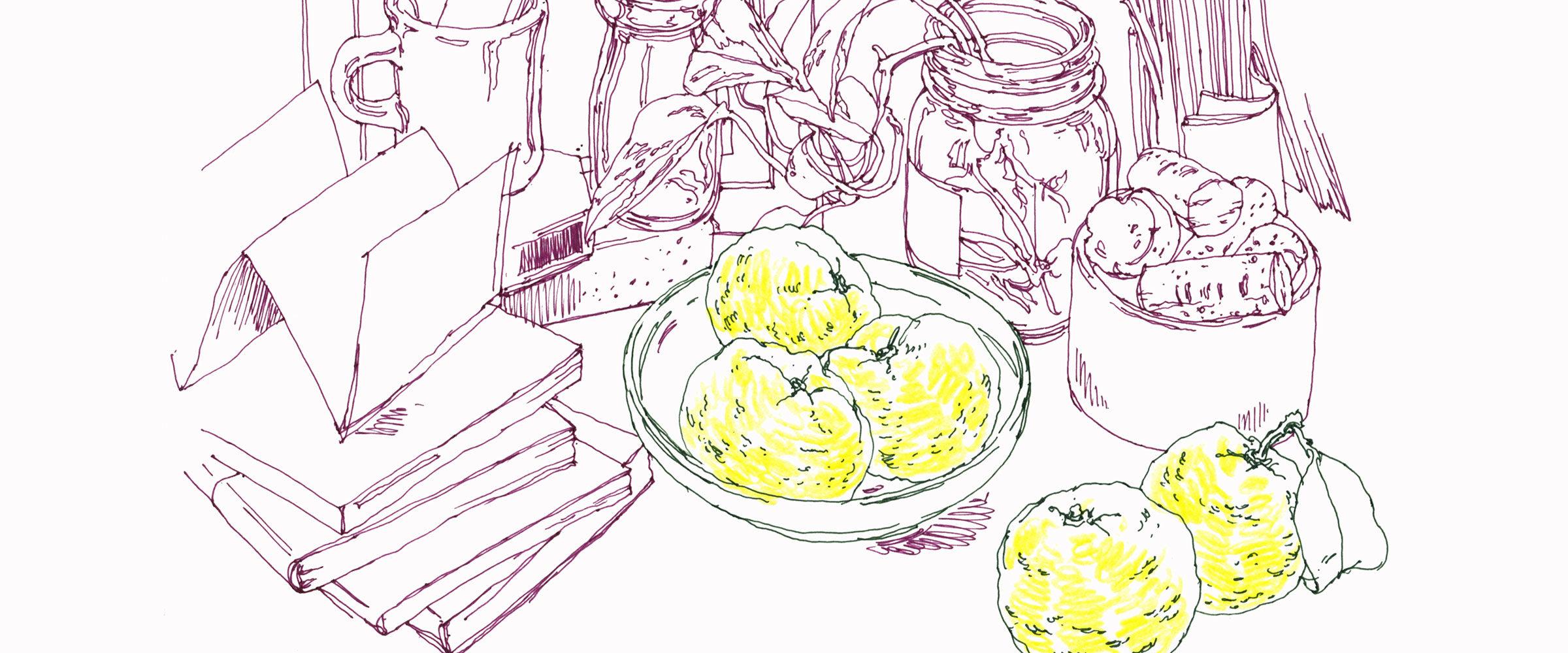 キレイを引き出す素材のはなし 柚子
