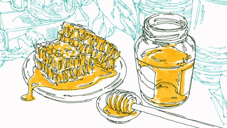 キレイを引き出す素材のはなし|ハチミツ